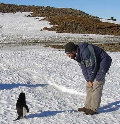 A penguin encounters a human during Antarctic summer.