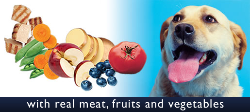 Basic Nutrition for Optimum Health for Pets
